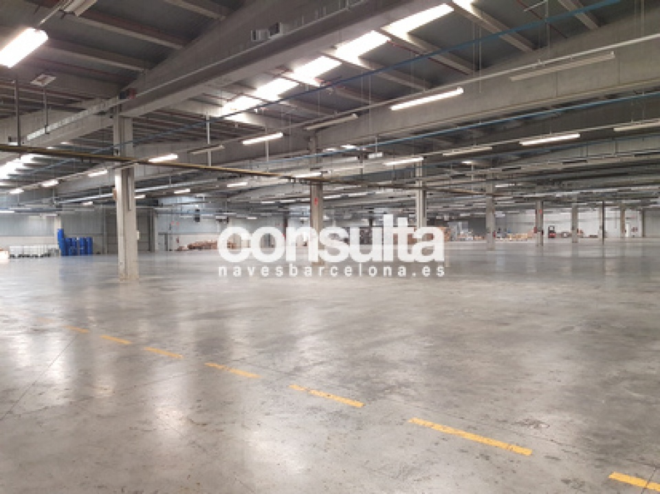 nave industrial logistica alquiler  celra